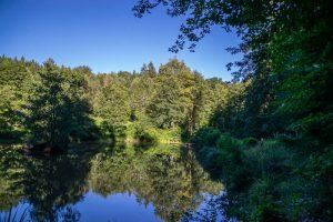 Ochsenweiher im Naturpark Schönbuch
